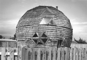 Geodesic house